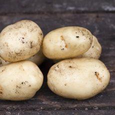 Bild på snarlik potatis